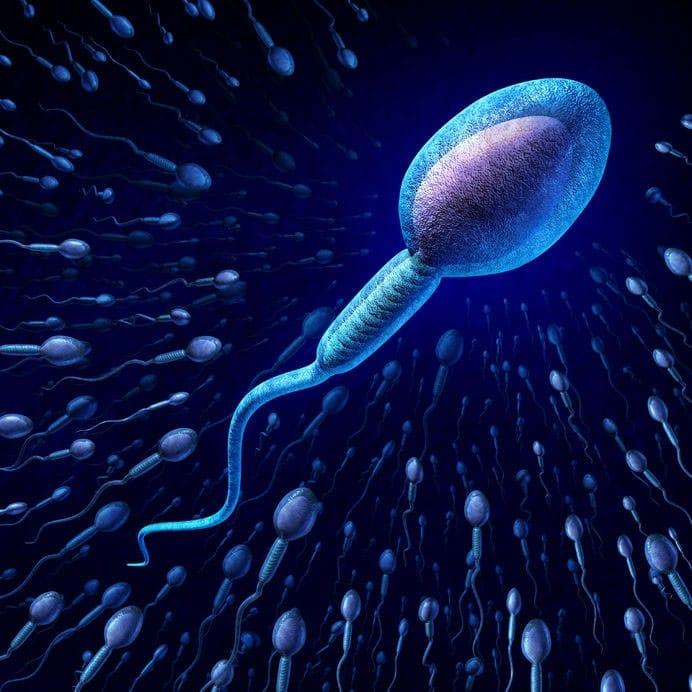 Aluminum-sperm-count
