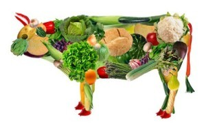 Is-vegetarianism-right-for-you--300x187