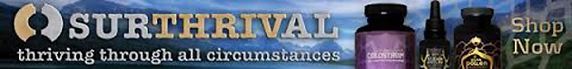 surthrival banner 2